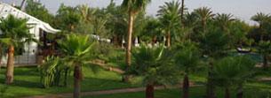 Séjour de rêve dans un ressort luxueux à Marrakech