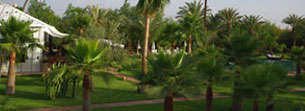 Luxury boutique hotels in Marrakech